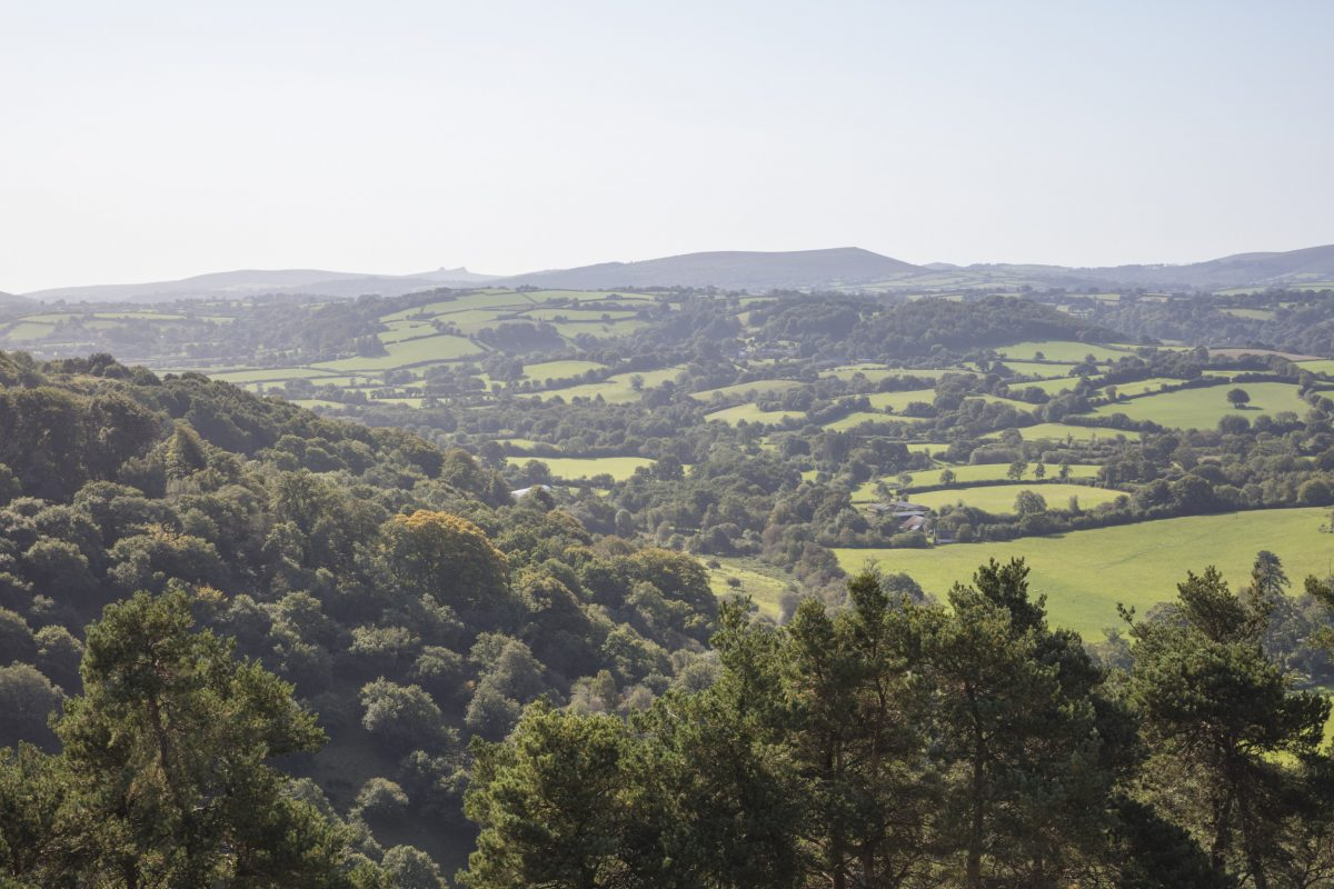 View over the Teign valley.