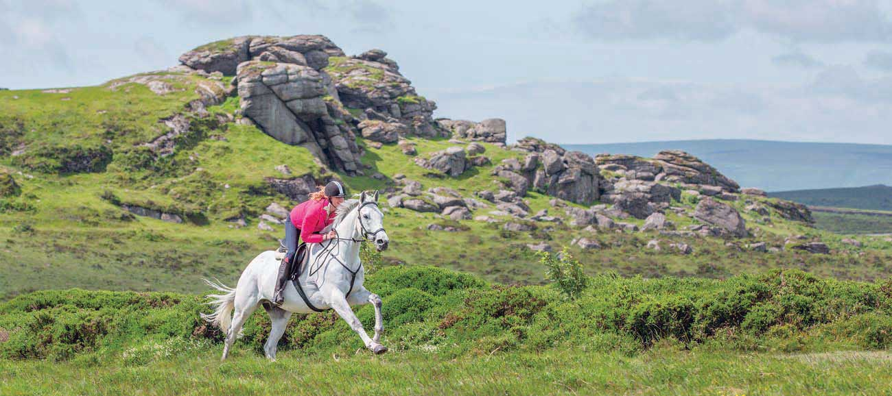 Horse-riding-moor